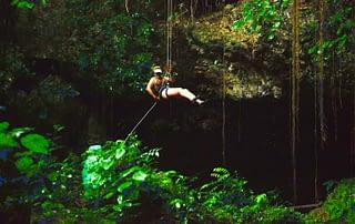 My Jungle Adventure